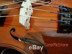 D Z Strad Handmade Viola Model 101 with Case, Shoulder Rest, and Bow Size 14