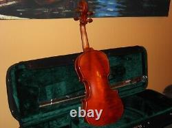New Handmade Pro Full Size Violin+pro Case+wood Bow Abalone Ebony Frog By Jz