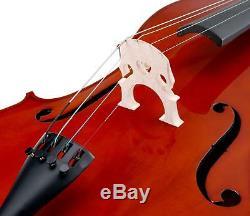 Professional 4/4 Cello 4 Strings Bridge Bow Gigbag Stand Pin Handmade Rosewood