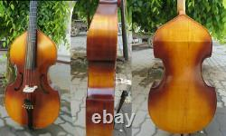 SONG Brand 5 strings viola da gamba 25 1/4 with frets. Great sound