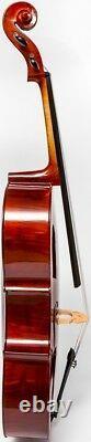 UK Cello 4/4 M-tunes No. 200 wood Luthier workshop
