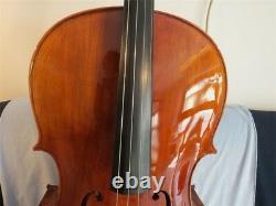 Yo-Yo Ma Model sleeping Concert cello 4/4 with dragon scroll, flamed back #12967